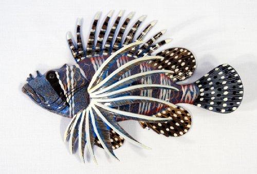 Handpainted Tropical Lion Fish Replica Wall Mount Decor Plaque 8