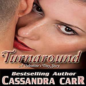 Turnaround Audiobook