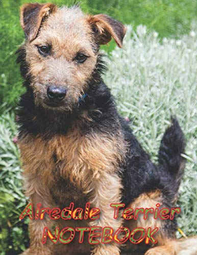 """Airedale Terrier NOTEBOOK: Dog Notebooks and Journals 110 pages (8.5""""x11"""")"""