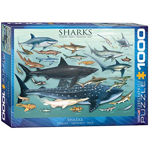 EuroGraphics Sharks 1000 Piece Puzzle