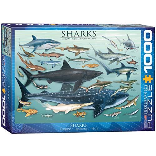 (EuroGraphics Sharks 1000 Piece Puzzle)