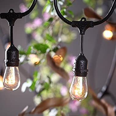 ProGreen Outdoor Commercial String Lights 30 Feets Long with 9 Hanging Dropped E27 Sockets, UL Listed Heavy Duty Weatherproof Black Wire Light Strings for Indoor and Outdoor (Bulb not Include)