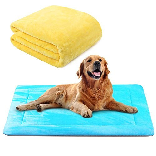 Dog Bed Mat Large Soft Crate Pad 42 In- 100% Machine Washable Anti-Slip Fleece Mattress Luxury Rich Color Blue