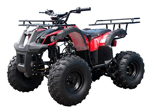 New-Atv-125cc-Mid-Size-Automatic-with-Reverse-Ata-135d-Model