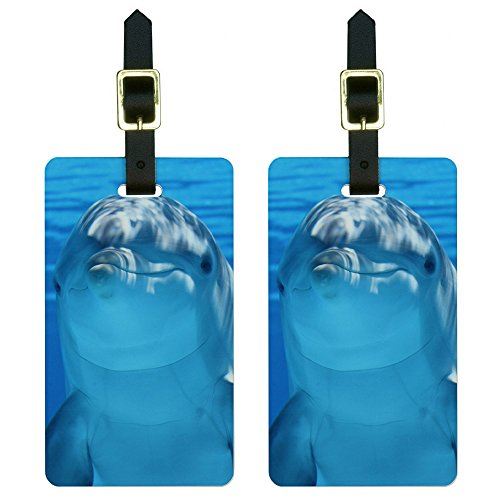 Dolphin Underwater Ocean - Scuba Diving Luggage Tags Suitcase ID Set of 2