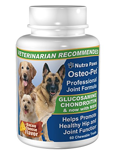 Osteo Pet Glucosamine Chondroitin for Dogs 60 Bacon & Cheese Flavored Treats