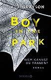 Boy in the Park – Wem kannst du trauen?: Roman