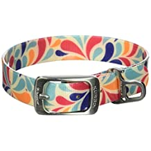 Kurgo Muck Collar Color Splash Collar Waterproof Dog Collar, Medium