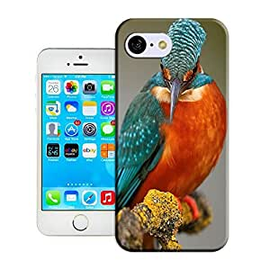 Xuey 356 Beautiful bird for iPhone5C Case- Compatible with iPhone 5C; Cute and fashion design.