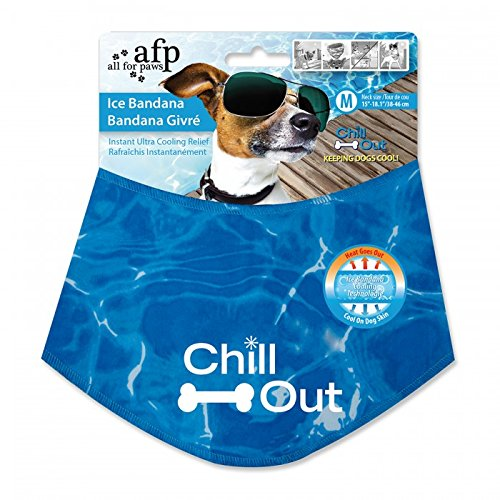 all-for-paws-chill-out-ice-bandana-medium