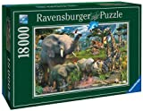 Ravensburger At The Waterhole Puzzle (18000-Piece) by Ravensburger