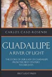 #7: Guadalupe: A River of Light: The Story of Our Lady of Guadalupe From the First Century to Our Days
