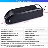 Greenergia 48V 17.5Ah Shark Battery with USB Port