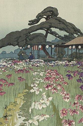 Japanese Art Print - Garden in Horikiri (Horikiri No Shobu) from the Series Twelve Views of Tokyo by Yoshida Hiroshi