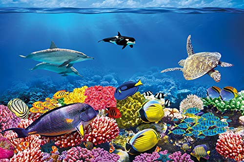 Dolphin Wallpaper Mural - GREAT ART Wall Mural Aquarium- Walls Decoration Colourful Underwater World Poster Sea Animals Ocean Fishes Wallpaper Dolphin Coral Reef 82.7x55 Inch