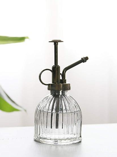 Amazon.com: Ebristar Botella de vidrio para plantas ...