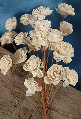 Richland Sola Flowers 12