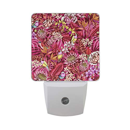 (OuLian Night Light Tropical Floral Pattern Led Light Lamp for Hallway, Kitchen, Bathroom, Bedroom, Stairs, DaylightWhite, Bedroom, Compact)