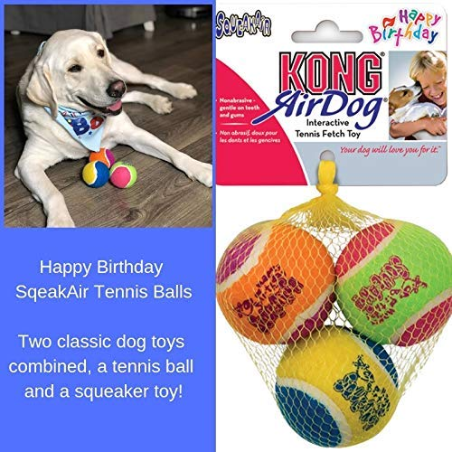 Dog Birthday Cake Mix and Frosting With Reusable Silicone Bone Cakes Baking Pan | 100% Natural Puppy Cake Mix | 6 Paw Print Balloons, Blue Happy Birthday Dog Bandana and 3 Toy Squeaky Birthday Balls by Giant Dog Paws (Image #6)