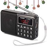 PRUNUS Portable SW / FM / AM MP3 radio with neodymium speaker. Large