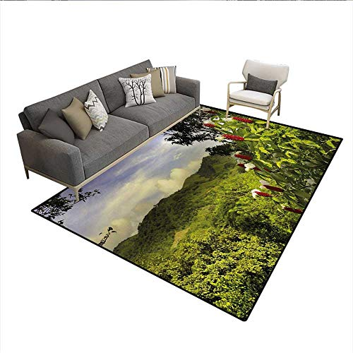 Floor Mat,Rural Scenery Costa Rica Countryside Greenery Tropic Accents Botanical,Small Rug Carpet,Green Red Violet BlueSize:6'x9' ()