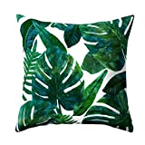 Godcraft 45x45cm Fashion Tropical Plant Cactus Throw Pillow Peach Skin Velvet Filling Sofa Home Decor Home Decor Gift Sofa Bedroom Home (TPRBZ0001-16)