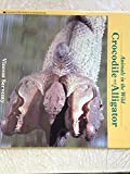 img - for Crocodile and Alligator (Animals in the Wild) book / textbook / text book