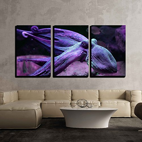 - wall26 - 3 Piece Canvas Wall Art - a Purple Octopus Swimming Under The Ocean - Modern Home Decor Stretched and Framed Ready to Hang - 16