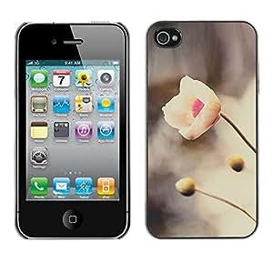 Híbridos estuche rígido plástico de protección con soporte para el Apple iPhone 4 / 4S - spring snow flower river nature petal