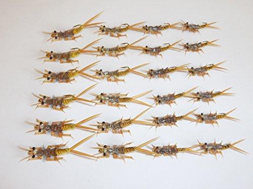 Golden Stonefly Nymph - 3