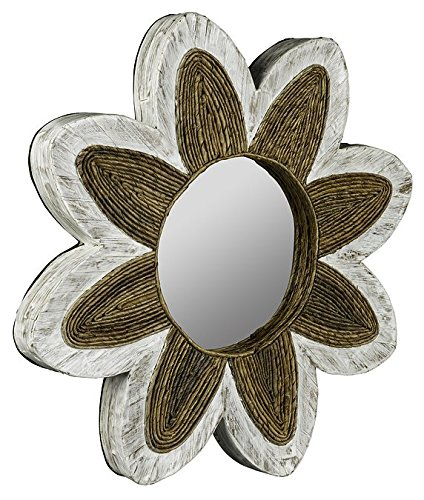 Round Mirror Hyacinth Water (Framed Round Mirror)