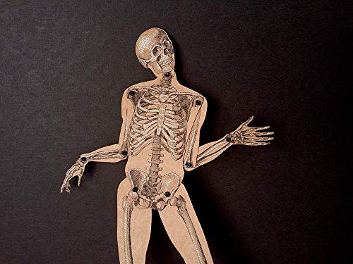 Skeleton articulated paper doll, hand painted paper puppet with movable parts, vintage style