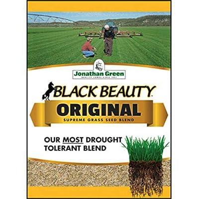 Jonathan Green 10317 Black Beauty Blend Grass Seed, 15 lb, 4500 Sq.Ft. : Garden & Outdoor