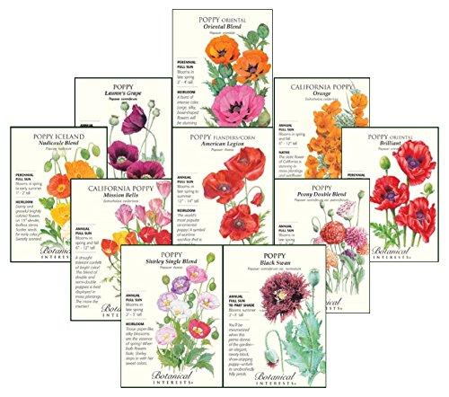 Poppy Flower Seeds - Botanical Interests