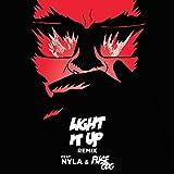 Light It Up (feat. Nyla & Fuse ODG) [Remix]