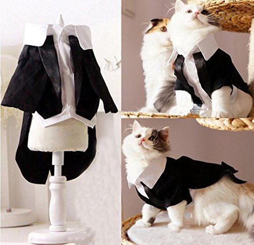 Handsome Prince Cat Bridegroom Wedding Tuxedo Faux Twinset Design Small Boy Dog Formal Attire Doggy Party Wear Puppy Outfit Doggie Photo Apparel with Buttons Holiday Fabric (2)