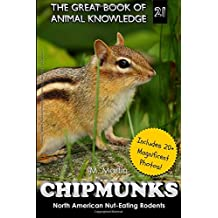 Chipmunks: North American Nut-Eating Rodents