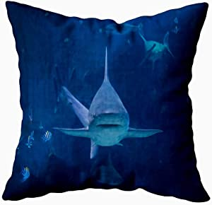 Jesmacti Christmas Decorative Pillow Covers,Decorative Pillow Case Cover Shark Swimming Camera in Aquarium Silvertip Toward Sentosa Indoor and Outdoor Use,Contour Throw Pillow Covers 18X18 Inches
