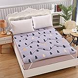 HYXL Thick floor mat Mattress Tatami mats Japanese futon mattress,Floor mattress Comfortable floor futon mat Single double student dormitory-D 90x200cm(35x79inch)