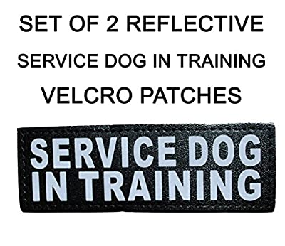 "Set of 2 Reflective ""SERVICE DOG IN TRAINING"" Velcro Patches for Service dog harnesses & vests."
