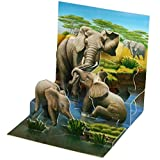 Happy Birthday Cards - Holiday Greeting Card, Graduation, Wedding, Anniversary Cards - for Wife Husband Kids Friends w/ Mailing Envelope  (1 Pack, African Elephant)