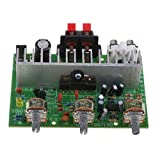 Dolity TDA7190 High Quality Dual Channel Digital Power Audio Stereo Amplifier Board DC 12V Natural Sound Effect