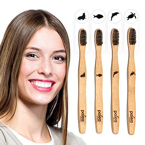 Palea Bamboo | Premium Bamboo Toothbrush with Charcoal Bio-Based Bristles | Pack of 4 Biodegradable Tooth Brush Set