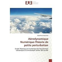 Aérodynamique Numérique-Théorie de petite perturbation: Etude Théorique et numérique de l'écoulement subsonique et transsonique autour des profils