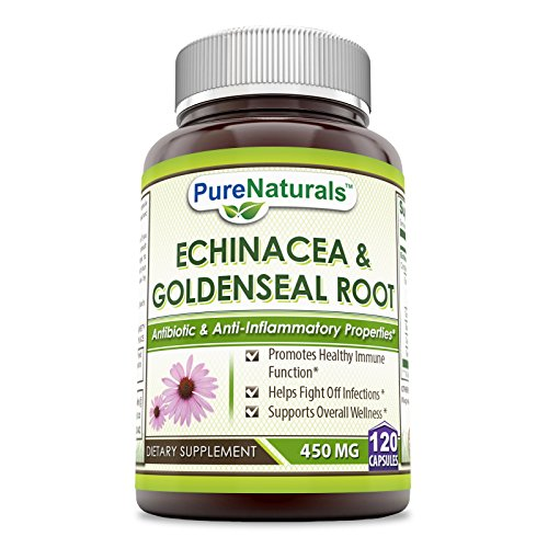 Pure Naturals Echinacea & Goldenseal Root 450 Mg 120 Capsules- Promotes Healthy Immune Function* Supports Overall Wellness* Helps Fight Off Infections