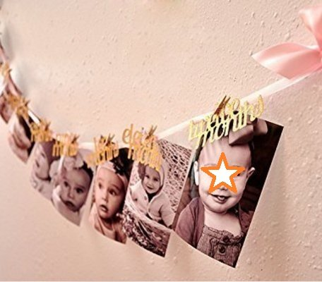 Newborn To 12 Months Photo Banner, First Birthday Decorations