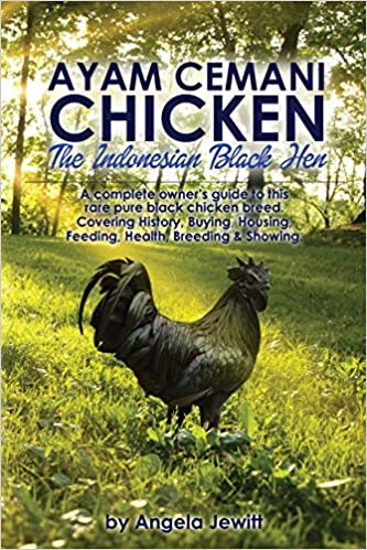 Ayam Cemani Chicken The Indonesian Black Hen A Complete Owner S