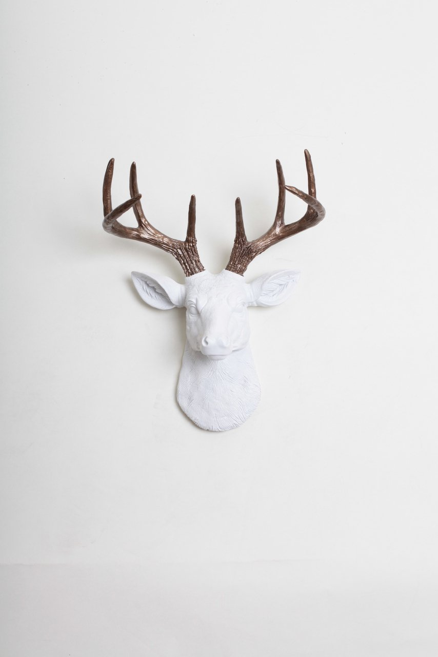 Amazon mini white faux deer head wall mount with bronze amazon mini white faux deer head wall mount with bronze antlers the mini lydia by white faux taxidermy miniature resin stag animal head wall mount amipublicfo Choice Image