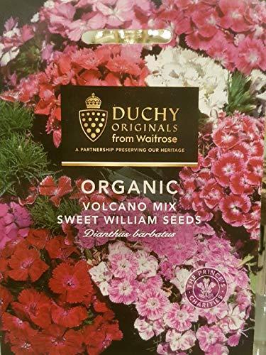 Duchy Originals Organic Sweet William Seeds