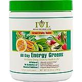Institute for Vibrant Living All Day Energy Greens® Fruit Flavor Hi-Octane Energy Drink For Health & Life Great Fruity Taste - 10.5 oz